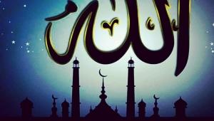 ALLAH (C.C.).