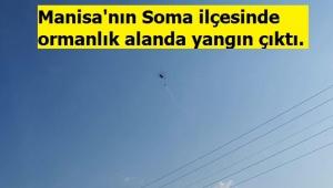 Son dakika. Manisa'nın Soma ilçesinde ormanlık alanda çıkan yangın kontrol altına alındı.