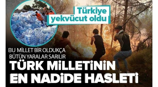 Türkiye yekvücut oldu! 81 ilden afet bölgesine yardım yağdı